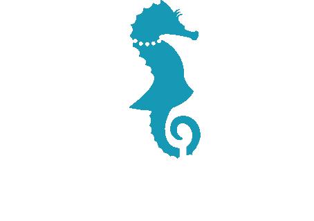 Alfredo Mode et Design